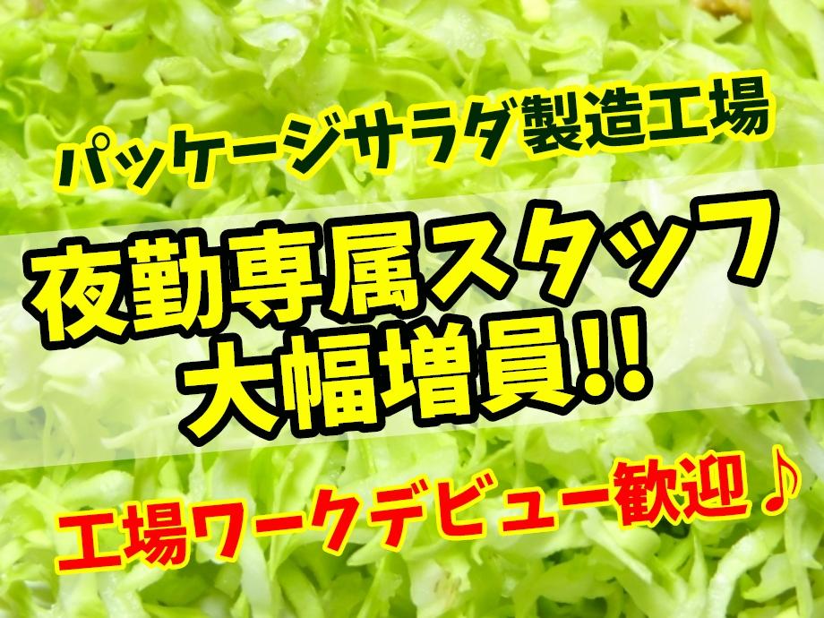 静岡県周智郡森町/夜勤専属のサラダ工場スタッフ募集