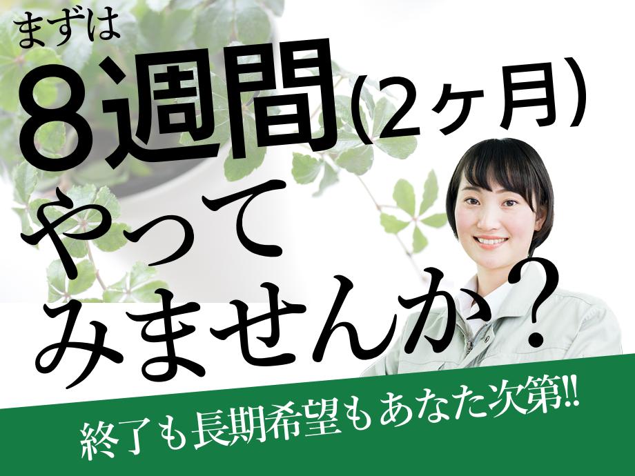 栃木県鹿沼市/2カ月短期のお仕事。延長自由!